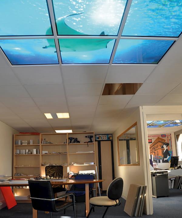 Bureau plafond nuageux aquarium